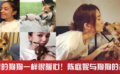 演戏时多亏有剧场人员帮忙照顾狗狗~~~~陈庭妮真的很爱狗狗呢